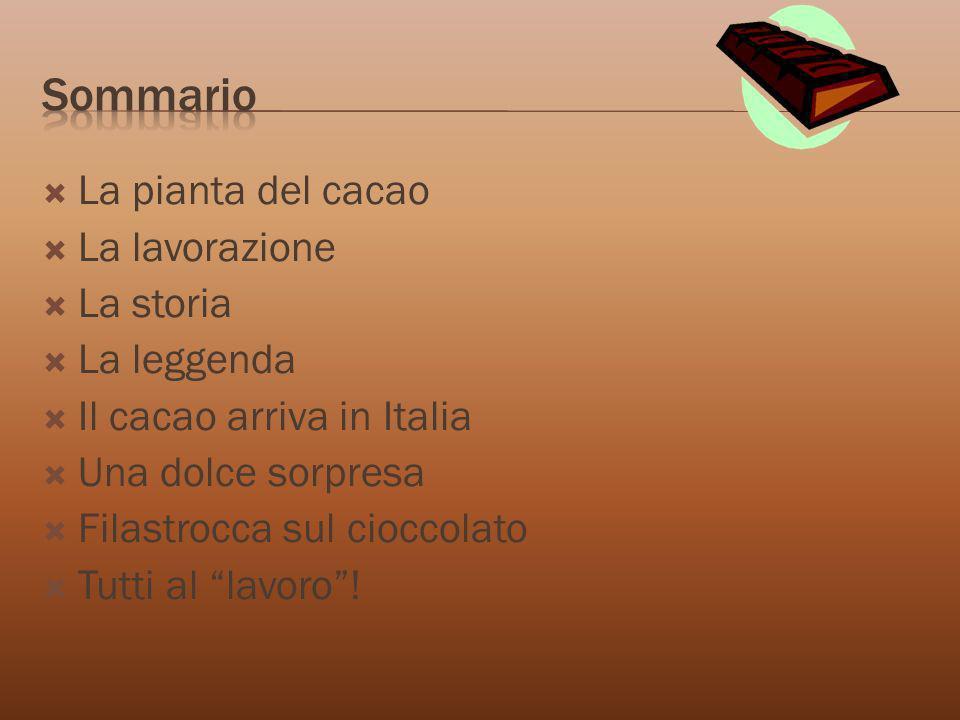 La pianta del cacao La lavorazione La storia La leggenda Il cacao arriva in Italia Una dolce sorpresa Filastrocca sul cioccolato Tutti al lavoro!