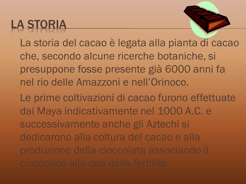 La storia del cacao è legata alla pianta di cacao che, secondo alcune ricerche botaniche, si presuppone fosse presente già 6000 anni fa nel rio delle