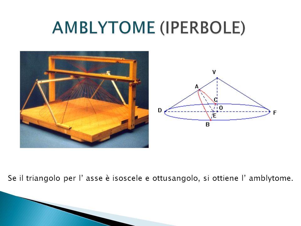 Se il triangolo per l asse è isoscele e ottusangolo, si ottiene l amblytome.