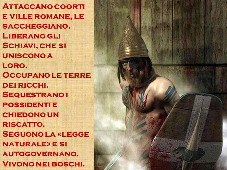 Attaccano coorti e ville romane, le saccheggiano.Liberano gli Schiavi, che si uniscono a loro.
