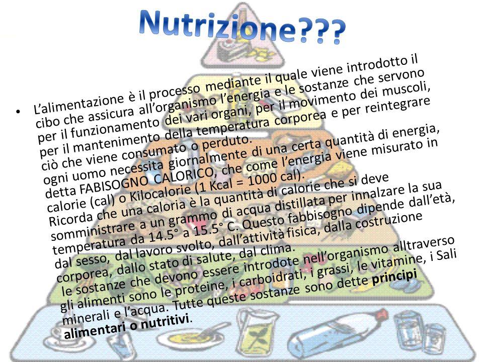 Lalimentazione è il processo mediante il quale viene introdotto il cibo che assicura allorganismo lenergia e le sostanze che servono per il funzioname