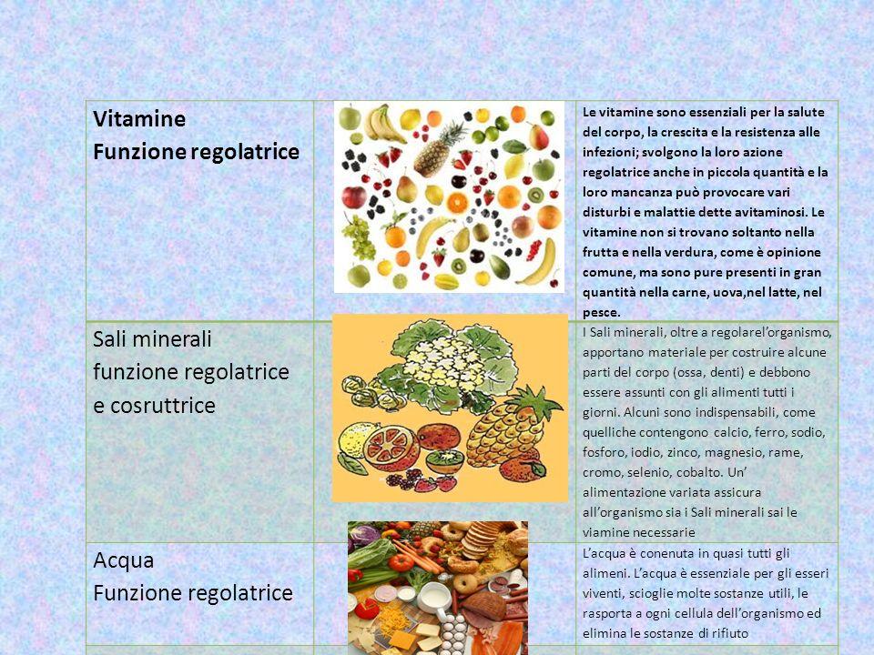 Vitamine Funzione regolatrice Le vitamine sono essenziali per la salute del corpo, la crescita e la resistenza alle infezioni; svolgono la loro azione
