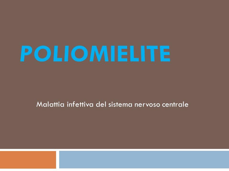 Introduzione La poliomielite è una malattia virale acuta molto contagiosa.