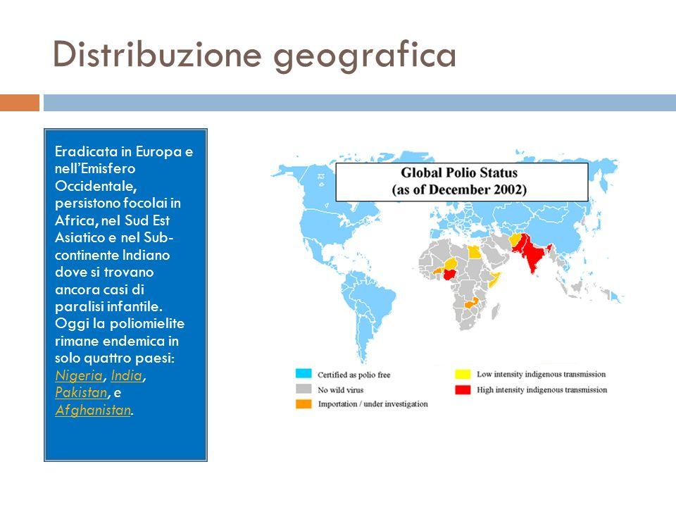 Distribuzione geografica Eradicata in Europa e nellEmisfero Occidentale, persistono focolai in Africa, nel Sud Est Asiatico e nel Sub- continente Indi