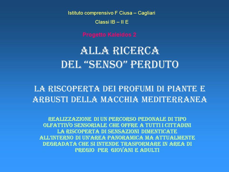 Progetto Kaleidos 2 Le regioni transfrontaliere del progetto Sardegna Corsica Liguria Toscana