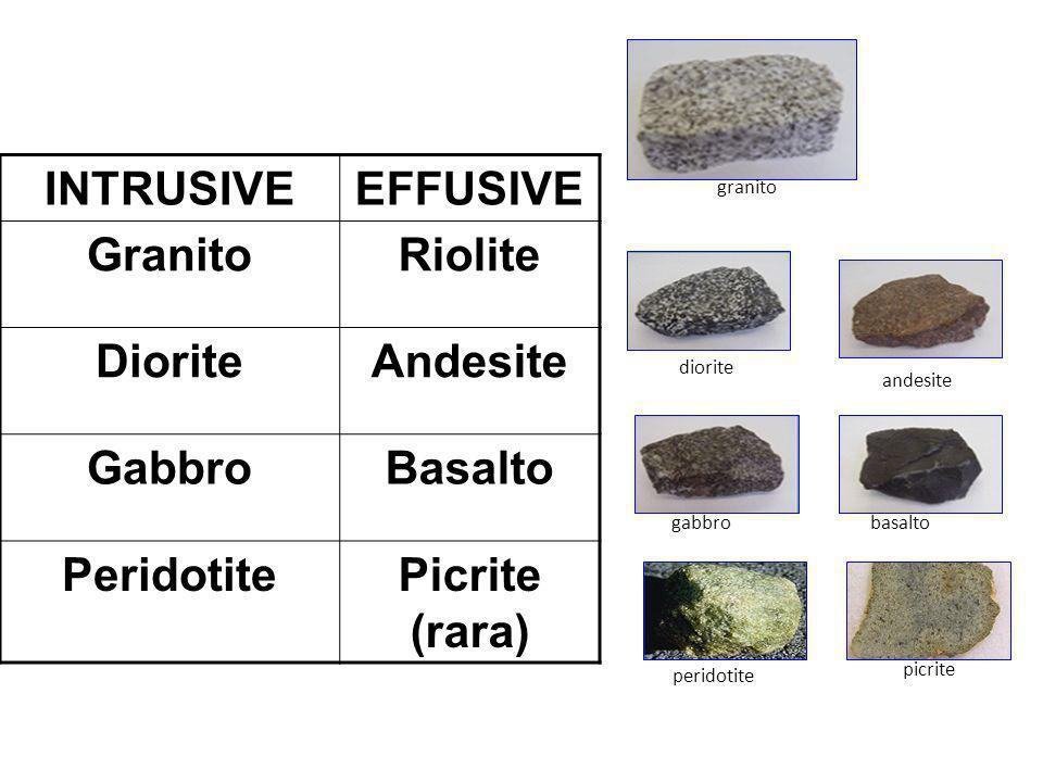 INTRUSIVEEFFUSIVE GranitoRiolite DioriteAndesite GabbroBasalto PeridotitePicrite (rara) granito diorite andesite gabbrobasalto peridotite picrite