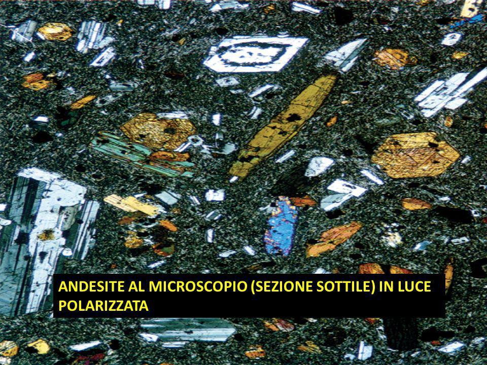 ANDESITE AL MICROSCOPIO (SEZIONE SOTTILE) IN LUCE POLARIZZATA