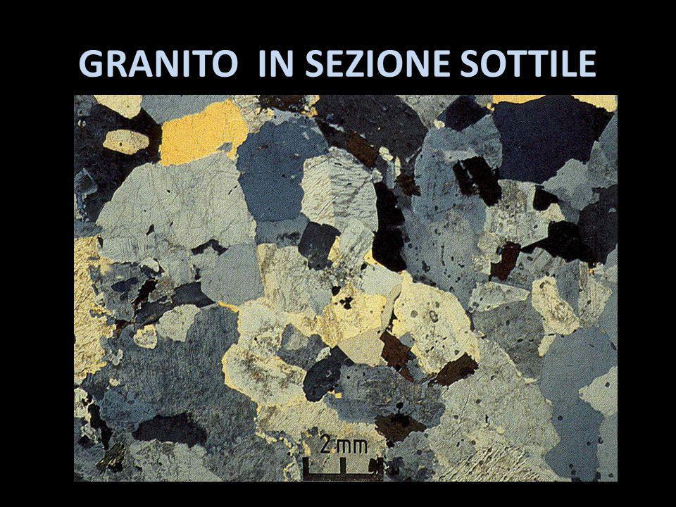 GRANITO IN SEZIONE SOTTILE
