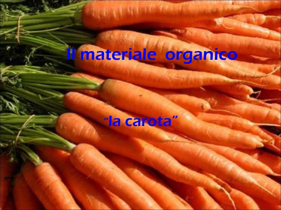 la carota Il materiale organico