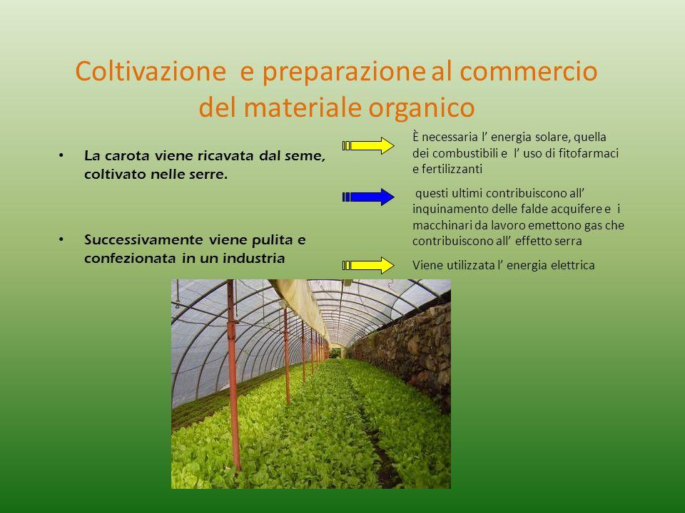 Coltivazione e preparazione al commercio del materiale organico La carota viene ricavata dal seme, coltivato nelle serre. Successivamente viene pulita