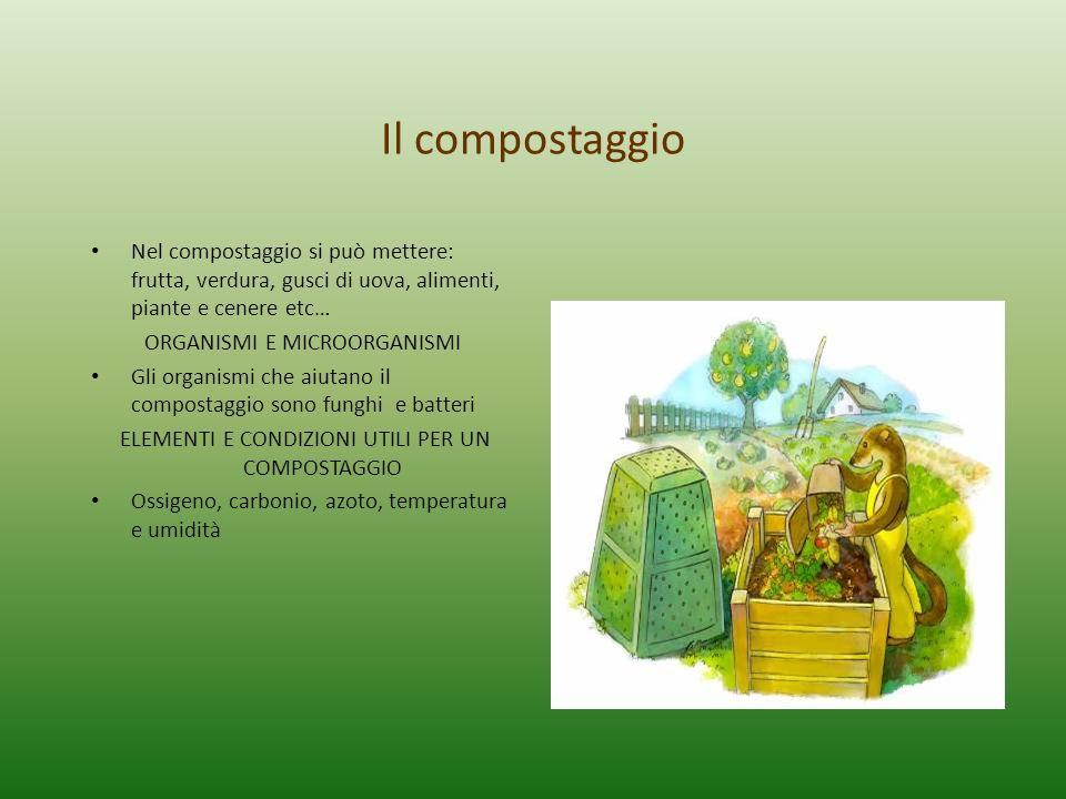Il compostaggio Nel compostaggio si può mettere: frutta, verdura, gusci di uova, alimenti, piante e cenere etc… ORGANISMI E MICROORGANISMI Gli organis