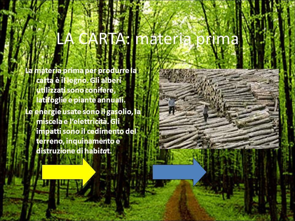 LA CARTA: materia prima La materia prima per produrre la carta è il legno. Gli alberi utilizzati sono conifere, latifoglie e piante annuali. Le energi