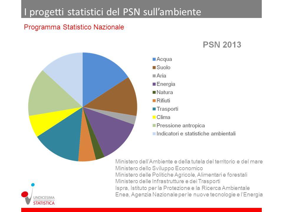 I progetti statistici del PSN sullambiente Programma Statistico Nazionale Ministero dellAmbiente e della tutela del territorio e del mare Ministero de