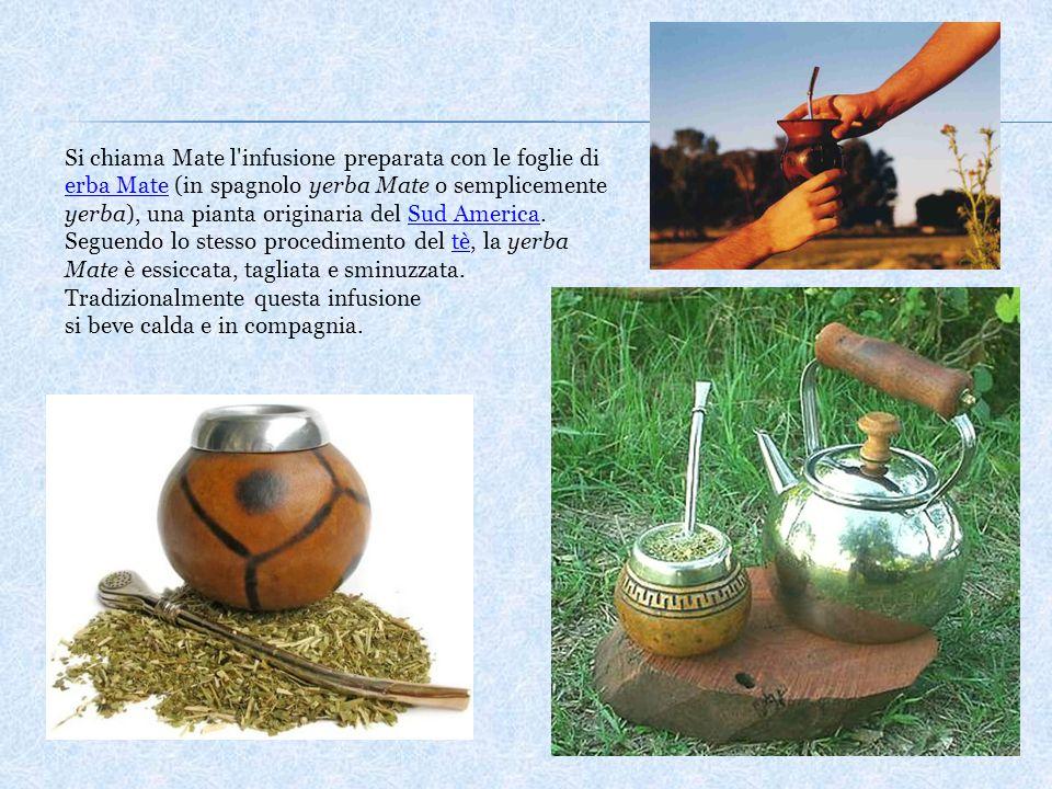 Si chiama Mate l'infusione preparata con le foglie di erba Mate (in spagnolo yerba Mate o semplicemente yerba), una pianta originaria del Sud America.