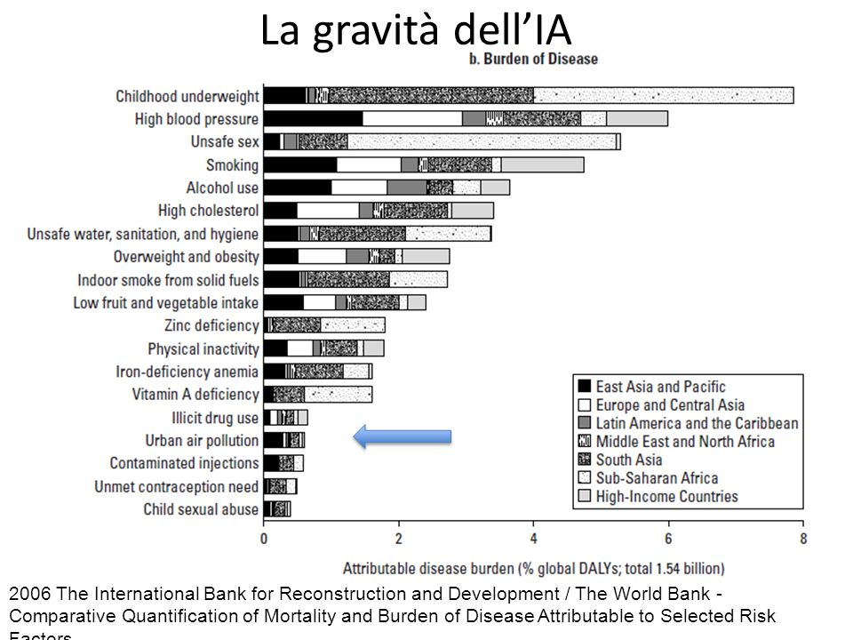 2006 The International Bank for Reconstruction and Development / The World Bank - Comparative Quantification of Mortality and Burden of Disease Attributable to Selected Risk Factors La gravità dellIA