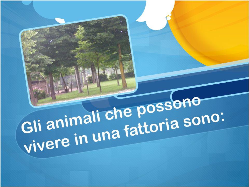 Registriamo sul cartellone tutte le informazioni degli animali che troviamo