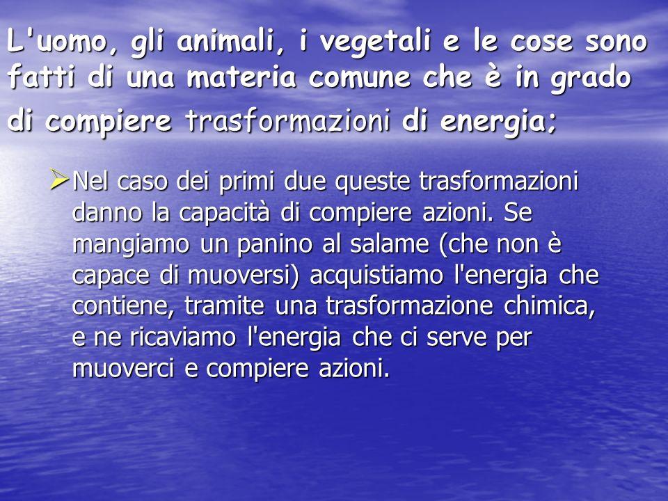 L'uomo, gli animali, i vegetali e le cose sono fatti di una materia comune che è in grado di compiere trasformazioni di energia; Nel caso dei primi du