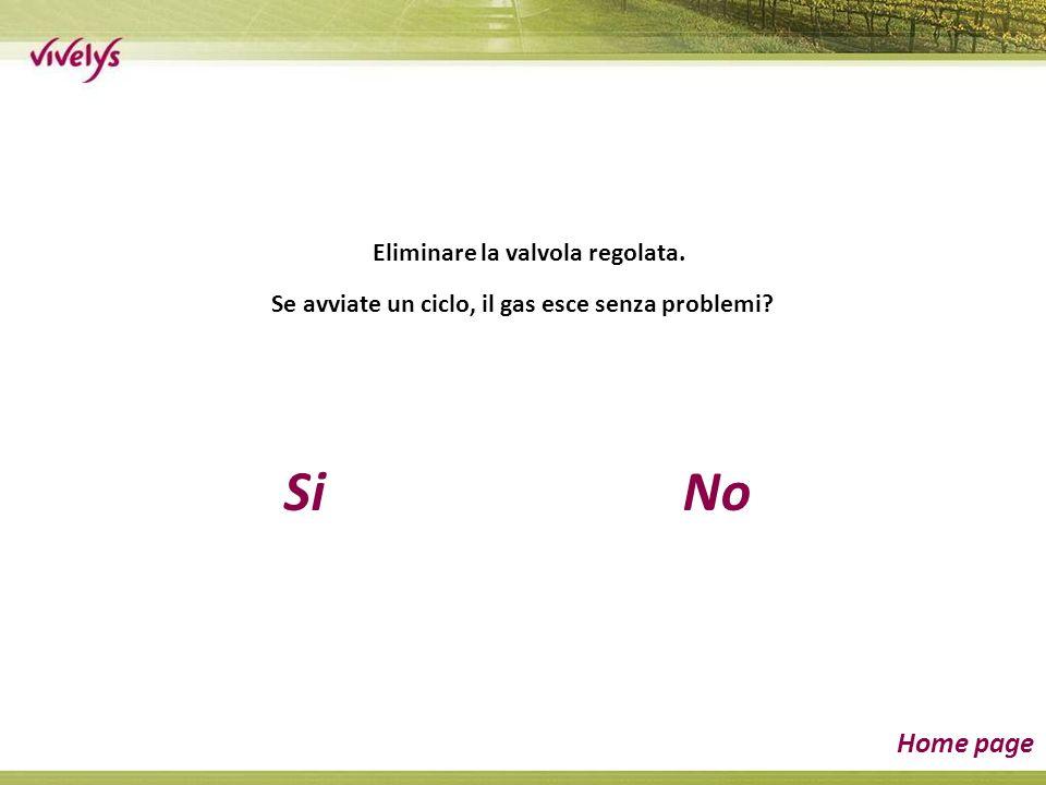SiNo Home page Eliminare la valvola regolata. Se avviate un ciclo, il gas esce senza problemi?