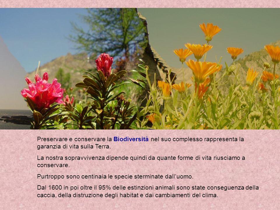 Un altro fattore determinante per la scomparsa di specie animali o vegetali è lintroduzione di specie al di fuori del loro ambiente originale.