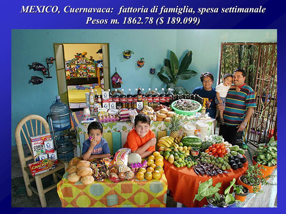 ITALIA, Sicilia: Famiglia MANZO, in una settimana spende 214,36 ($ 260,11)