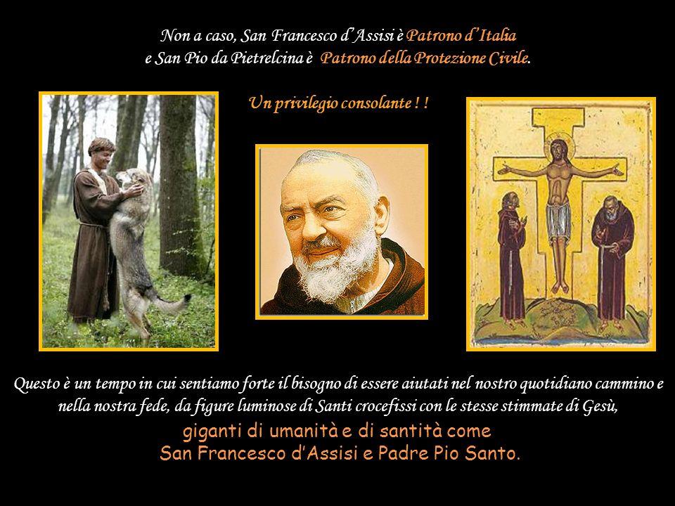 Loro hanno la capacità di rispondere, oltre agli aneliti del singolo, alle necessità della società di ogni tempo: il messaggio Francescano risponde ai