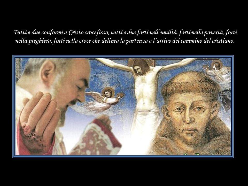 Non a caso, San Francesco dAssisi è Patrono dItalia e San Pio da Pietrelcina è Patrono della Protezione Civile. Un privilegio consolante ! ! Questo è