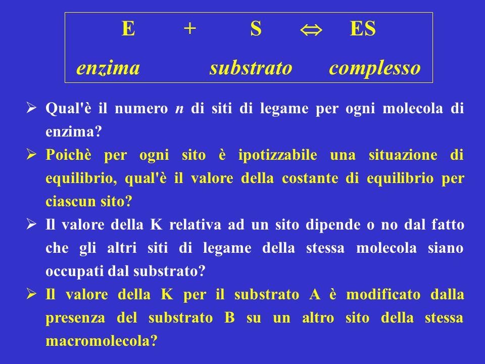 E + S ES enzima substrato complesso Qual è il numero n di siti di legame per ogni molecola di enzima.