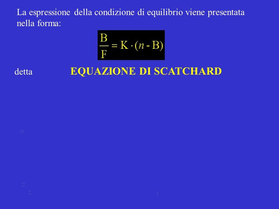 La espressione della condizione di equilibrio viene presentata nella forma: detta EQUAZIONE DI SCATCHARD