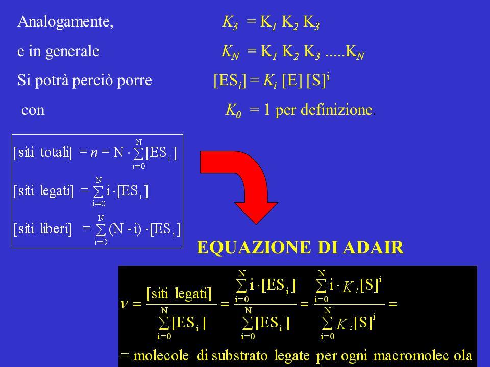 Analogamente, K 3 = K 1 K 2 K 3 e in generale K N = K 1 K 2 K 3.....K N Si potrà perciò porre [ES i ] = K i [E] [S] i con K 0 = 1 per definizione.