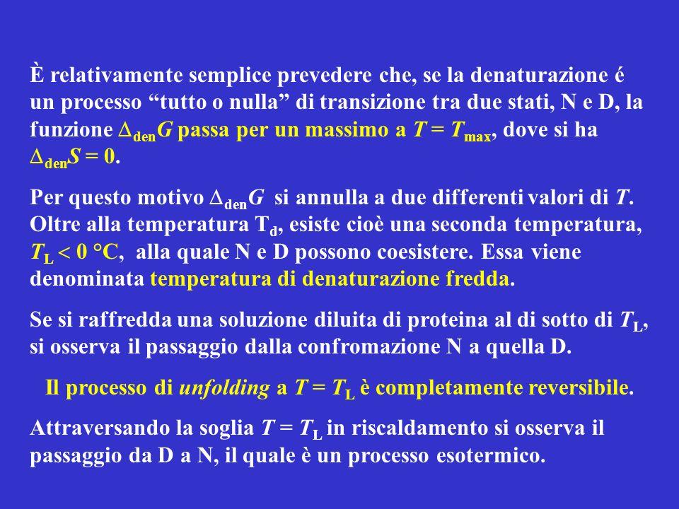 È relativamente semplice prevedere che, se la denaturazione é un processo tutto o nulla di transizione tra due stati, N e D, la funzione den G passa per un massimo a T = T max, dove si ha den S = 0.