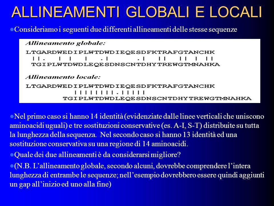ALLINEAMENTI GLOBALI E LOCALI Consideriamo i seguenti due differenti allineamenti delle stesse sequenze Nel primo caso si hanno 14 identità (evidenziate dalle linee verticali che uniscono aminoacidi uguali) e tre sostituzioni conservative (es.