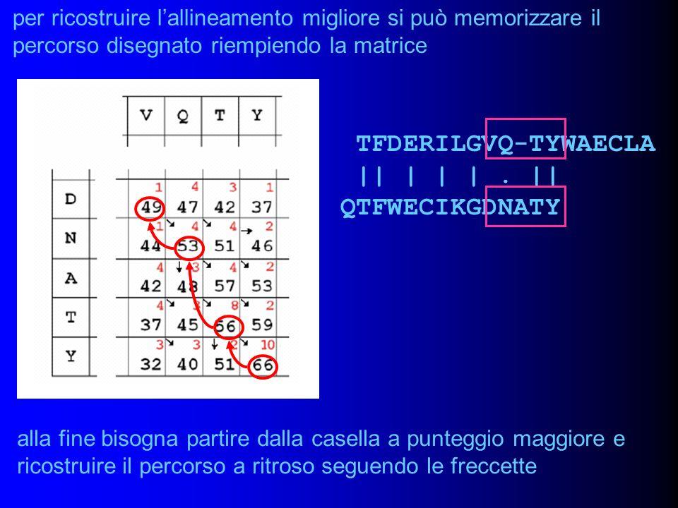 per ricostruire lallineamento migliore si può memorizzare il percorso disegnato riempiendo la matrice alla fine bisogna partire dalla casella a punteg