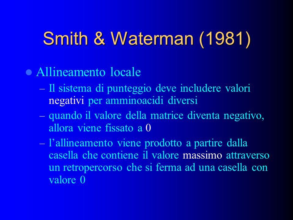 Smith & Waterman (1981) Allineamento locale – Il sistema di punteggio deve includere valori negativi per amminoacidi diversi – quando il valore della matrice diventa negativo, allora viene fissato a 0 – lallineamento viene prodotto a partire dalla casella che contiene il valore massimo attraverso un retropercorso che si ferma ad una casella con valore 0