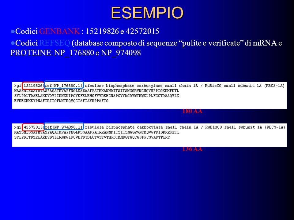 ESEMPIO Codici GENBANK : 15219826 e 42572015 Codici REFSEQ (database composto di sequenze pulite e verificate di mRNA e PROTEINE: NP_176880 e NP_974098 180 AA 136 AA
