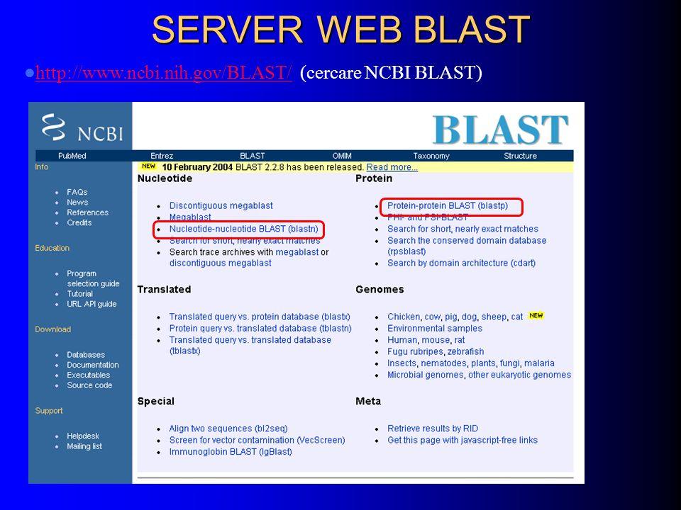 SERVER WEB BLAST http://www.ncbi.nih.gov/BLAST/ (cercare NCBI BLAST) http://www.ncbi.nih.gov/BLAST/
