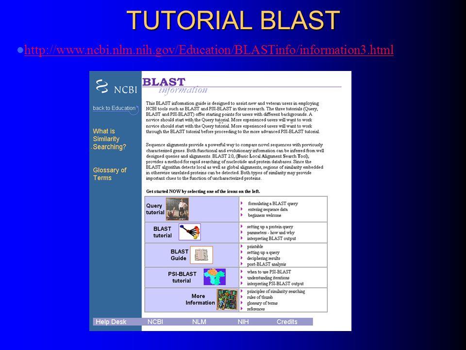 TUTORIAL BLAST http://www.ncbi.nlm.nih.gov/Education/BLASTinfo/information3.html