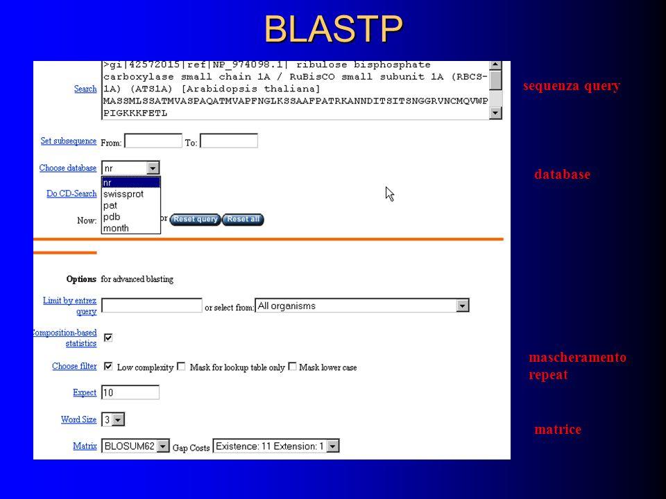 BLASTP sequenza query database matrice mascheramento repeat