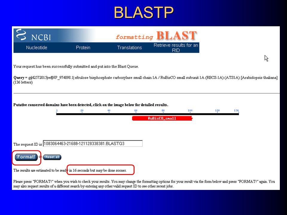 BLASTP