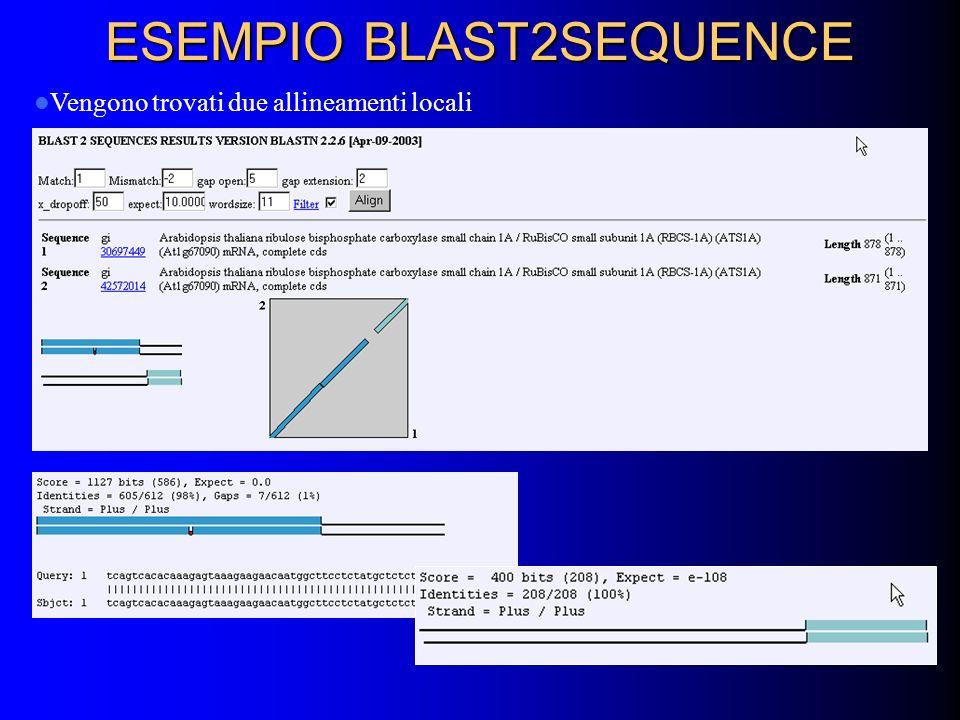 ESEMPIO BLAST2SEQUENCE Vengono trovati due allineamenti locali