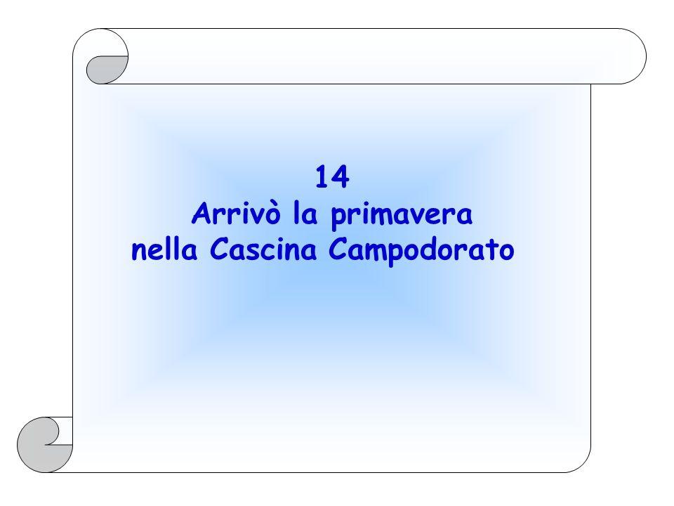 14 Arrivò la primavera nella Cascina Campodorato