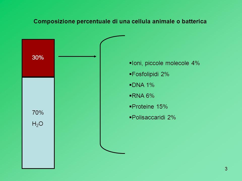 3 70% H 2 O 30% Ioni, piccole molecole 4% Fosfolipidi 2% DNA 1% RNA 6% Proteine 15% Polisaccaridi 2% Composizione percentuale di una cellula animale o