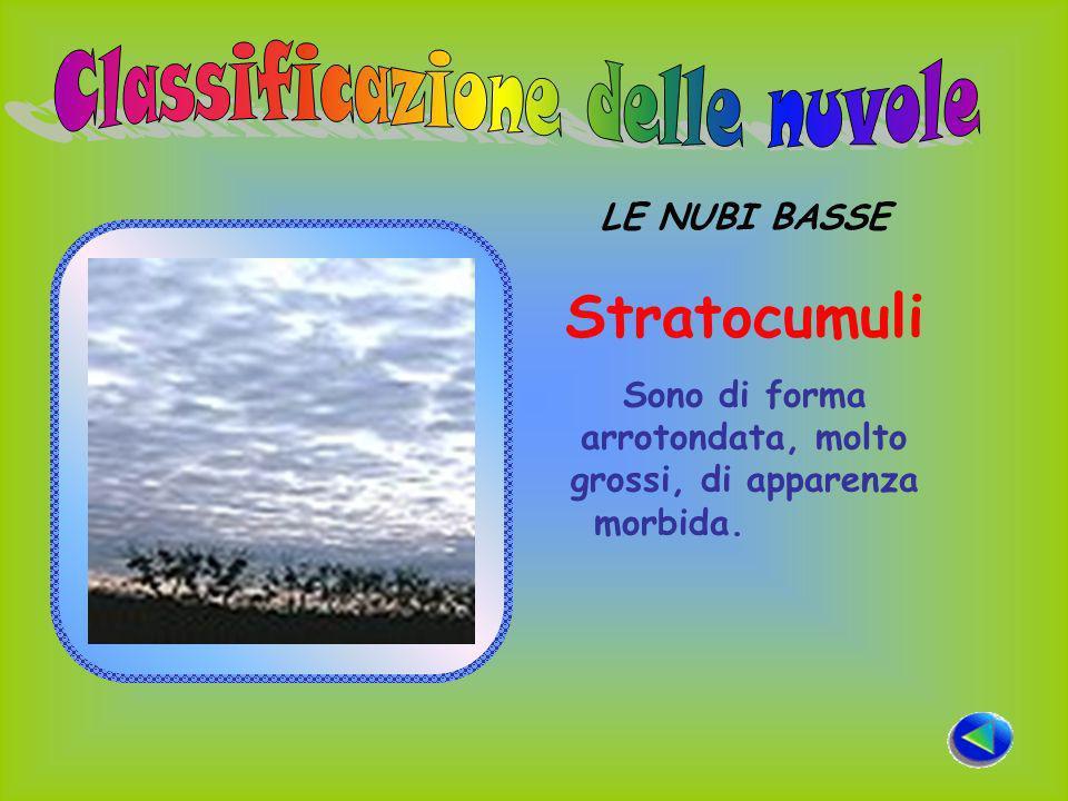 LE NUBI BASSE Stratocumuli Sono di forma arrotondata, molto grossi, di apparenza morbida.