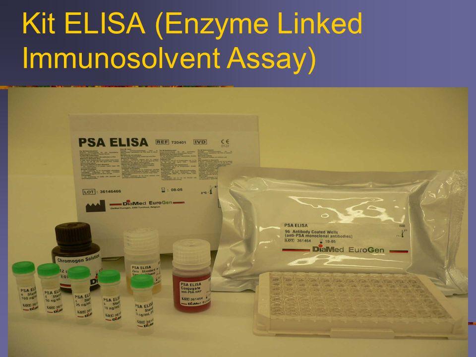 Kit ELISA (Enzyme Linked Immunosolvent Assay)