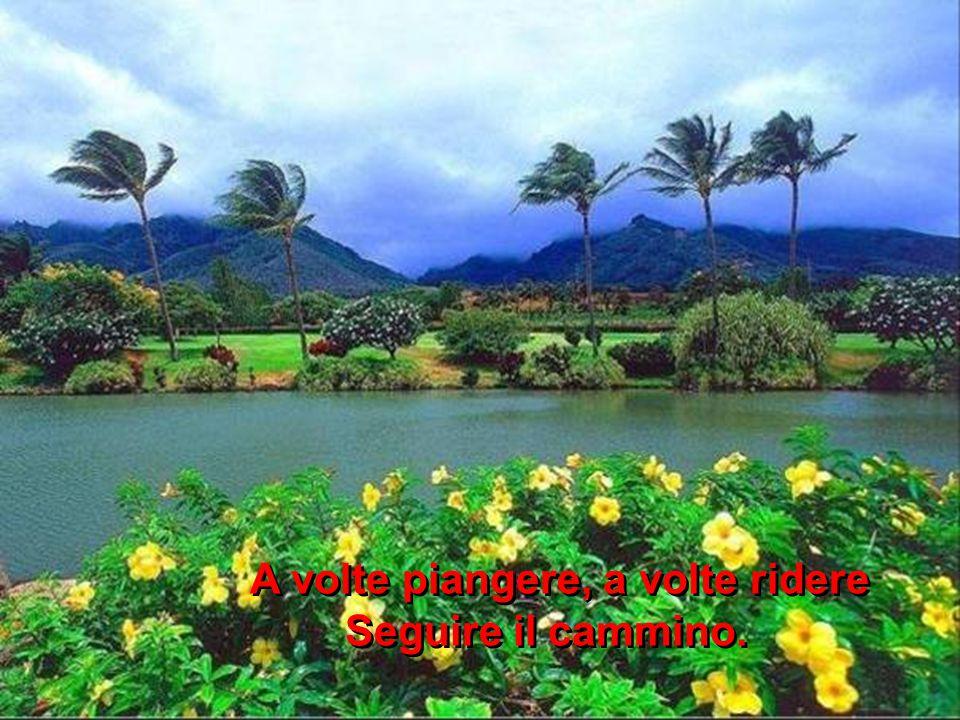 La nostra vita è così viaggiare,cantare È il nostro destino. La nostra vita è così viaggiare,cantare È il nostro destino.