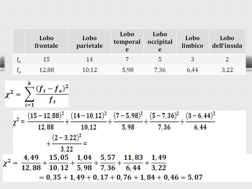 3° passo: calcolo della statistica Lobo frontale Lobo parietale Lobo temporal e Lobo occipital e Lobo limbico Lobo dellinsula fefe 15147532 fafa 12,8810,12 5,987,366,443,22