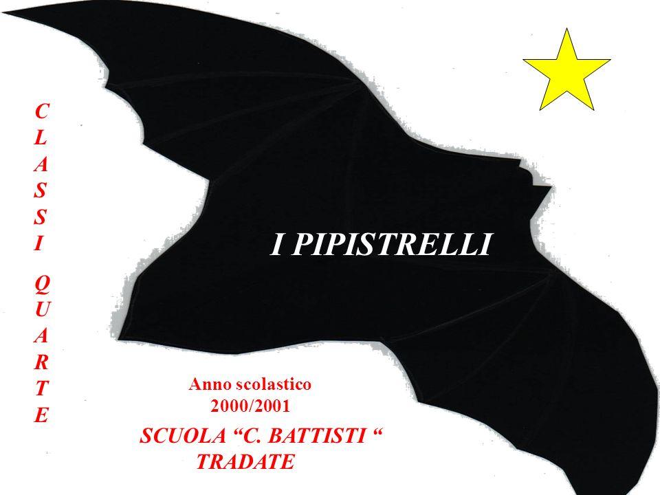 I PIPISTRELLI CLASSIQUARTECLASSIQUARTE SCUOLA C. BATTISTI TRADATE Anno scolastico 2000/2001