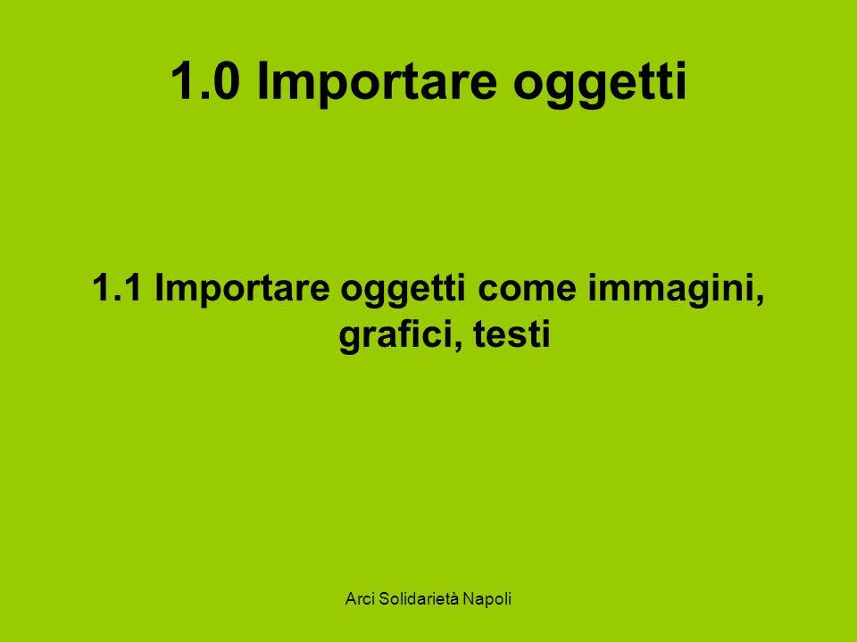 1.0 Importare oggetti 1.1 Importare oggetti come immagini, grafici, testi