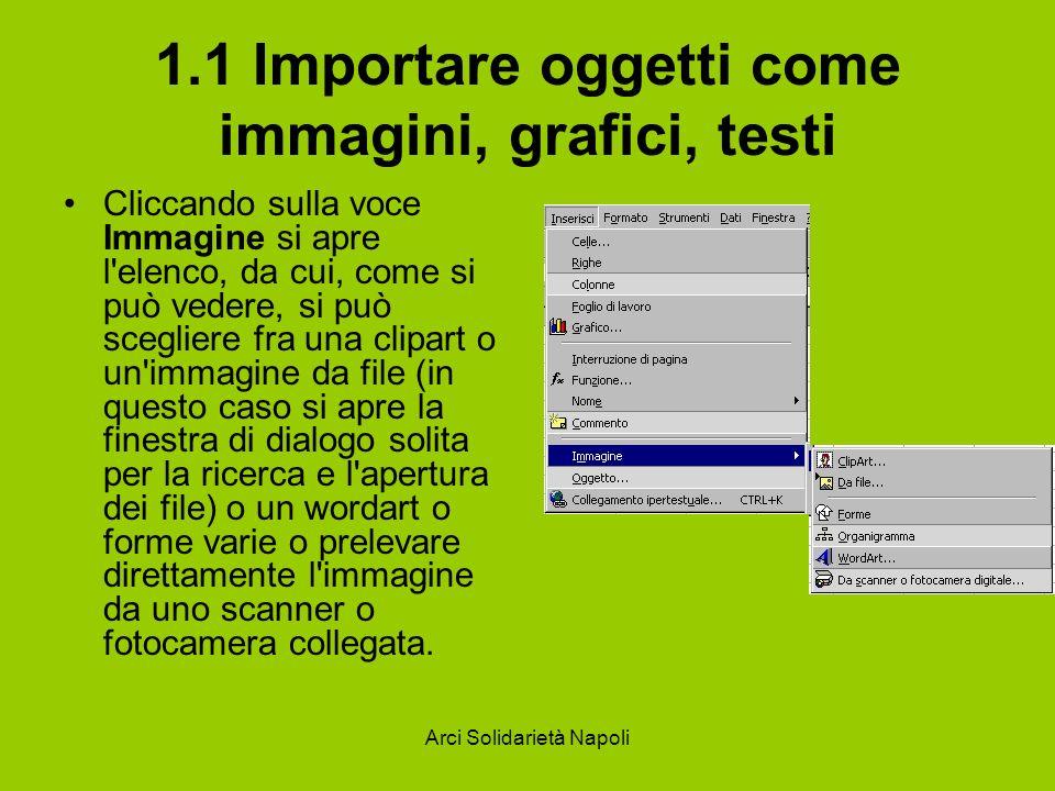 Arci Solidarietà Napoli 1.1 Importare oggetti come immagini, grafici, testi Cliccando sulla voce Immagine si apre l'elenco, da cui, come si può vedere