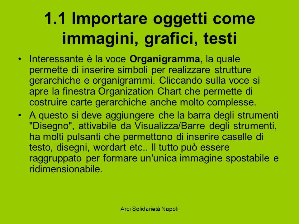 Arci Solidarietà Napoli 1.1 Importare oggetti come immagini, grafici, testi Interessante è la voce Organigramma, la quale permette di inserire simboli