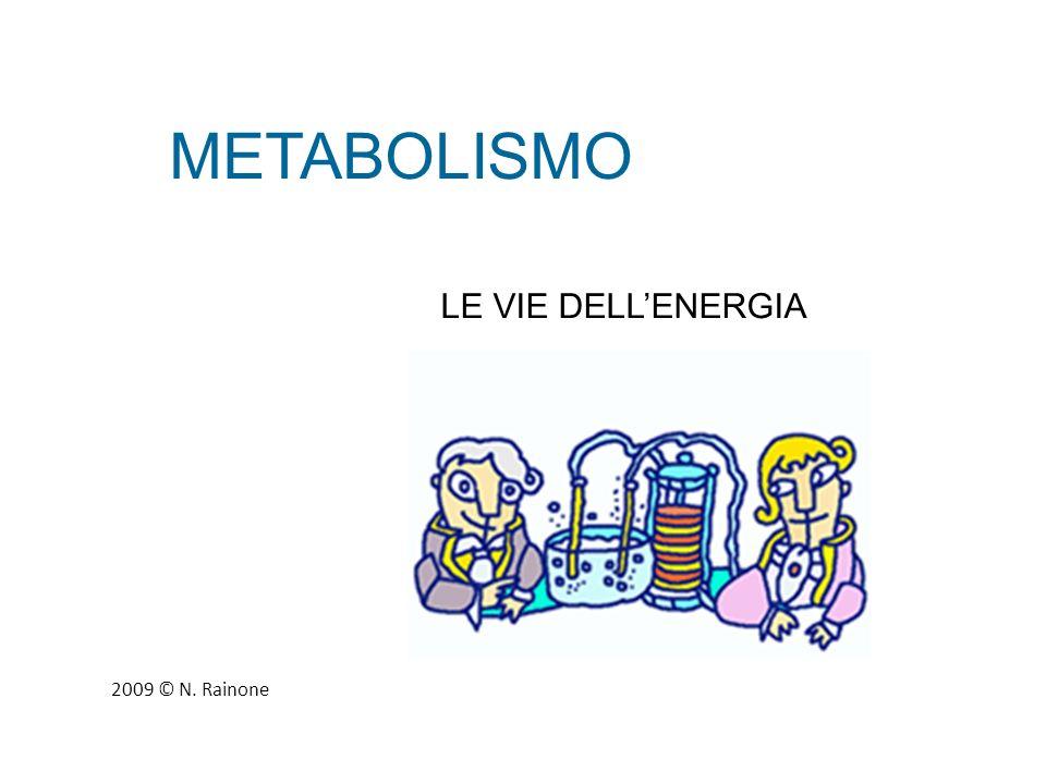 METABOLISMO ENERGIA POTENZIALE Energia immagazzinata che può trasformarsi in energia cinetica in opportune condizioni.